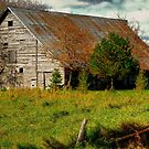 Old Country Classic by Larry Trupp