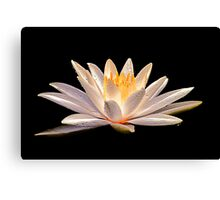 Lila - The Divine Play of Creation Canvas Print