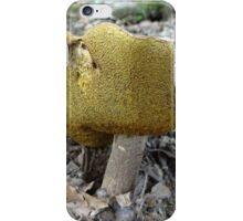 Big Bolete iPhone Case/Skin