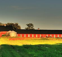 Long Red Barn by Larry Trupp