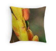 Romantic Lovely Peach & Yellow Hawaiian Flower Throw Pillow