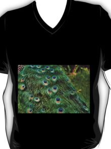 Peacock Plumage T-Shirt