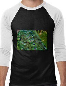 Peacock Plumage Men's Baseball ¾ T-Shirt