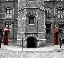 Rosenborg Castle, Copenhagen by MikeyLee