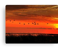 Wings on High!!! Canvas Print
