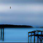 Flying Bird by Angelika  Vogel