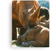 Animal Parents Canvas Print