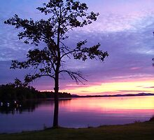 Sunrise at Moosehead Lake by Dandelion Dilluvio