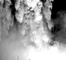 """The Roar of the Falls"" by Lynn Bawden"