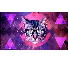 Sweet Cat Photographic Print