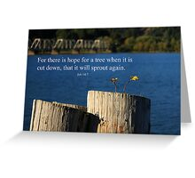 Hope For A Tree Greeting Card