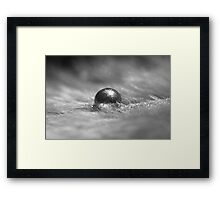 Silver Pigment on Water Droplet and Feather Framed Print