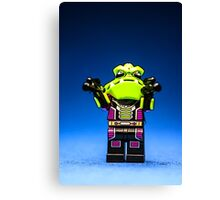 One mean mother! Canvas Print