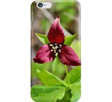 Red Trillium III iPhone Case/Skin