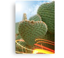 Desert Love Canvas Print