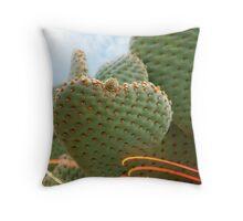 Desert Love Throw Pillow
