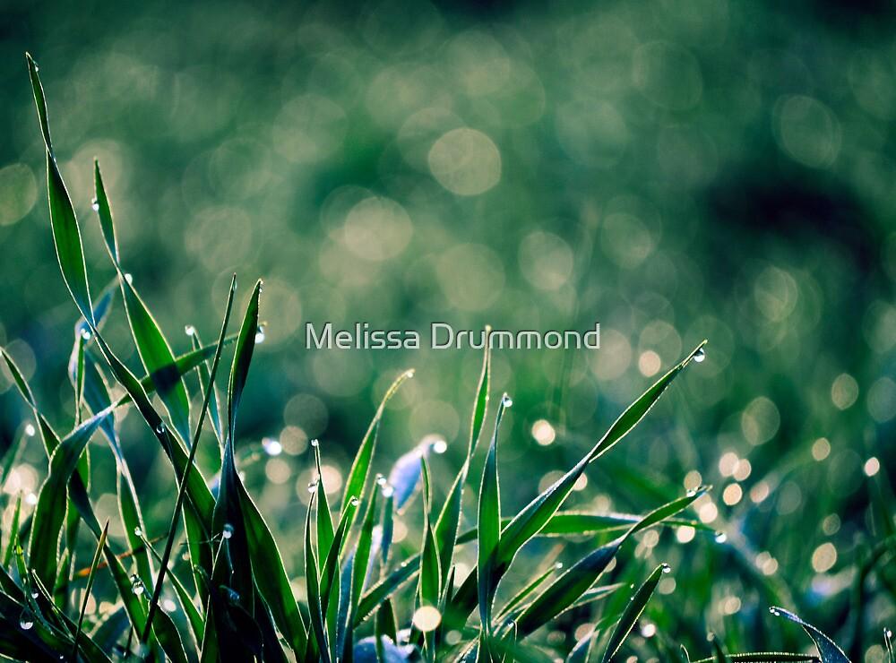Good Mornin' by Melissa Drummond