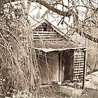Old shed - Balingup by pennyswork
