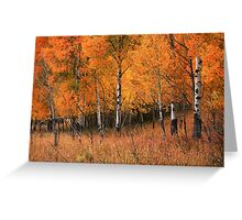 Fire Grove Greeting Card