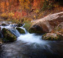 Autumn Cove by David Kocherhans