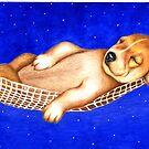Sleeping under the stars 763 views by Margaret Sanderson