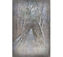 Walkway Photographic Print