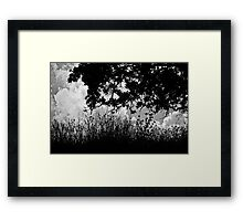 The Wind Beyond the Trees Framed Print