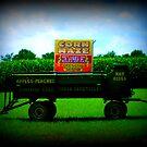 My Neighbor Is A Corn Maze!!! by Debbie Robbins