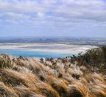 another view from the Nut at stanley tasmania by geoffgrattan