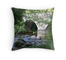 Btidge over the river Dart Throw Pillow