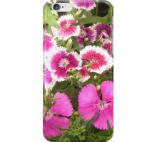 Dianthus Cluster iPhone Case/Skin