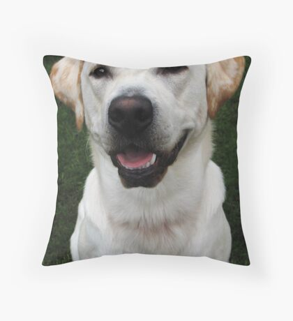 Brannoc Throw Pillow