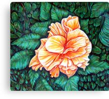 Double Orange Hibiscus Canvas Print