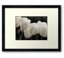 Tulips in B&W Framed Print