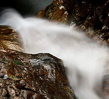 Torrent Froda VII by jimmylu