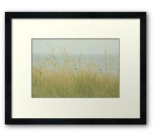 At the Sea Framed Print
