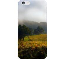Vineyard Adelaide Hills in Autumn iPhone Case/Skin