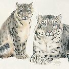 Snow Leopard Wrap by BarbBarcikKeith