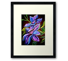 Flowers...Clematis Framed Print