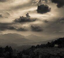 Mountain Life II by SRana