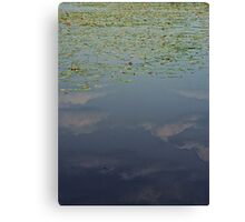 Upside Down Reflection Canvas Print