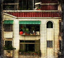 Red Tiled Roof by Robert Baker