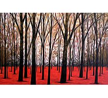 Abstract Trees Oil Painting #5 Photographic Print