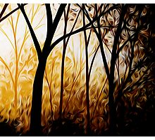 Abstract Trees Oil Painting #7 Photographic Print