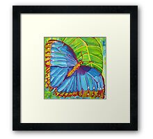 Blue Morpho Butterfly of the Rainforest Framed Print