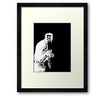 Gothic Gargoyle Perch (full alpha in white) Framed Print