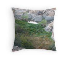 An Oasis Throw Pillow