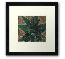 Succulent Painting Framed Print