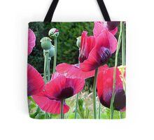 Poppyland.............................Most Products Tote Bag