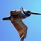 I am flying... by loiteke